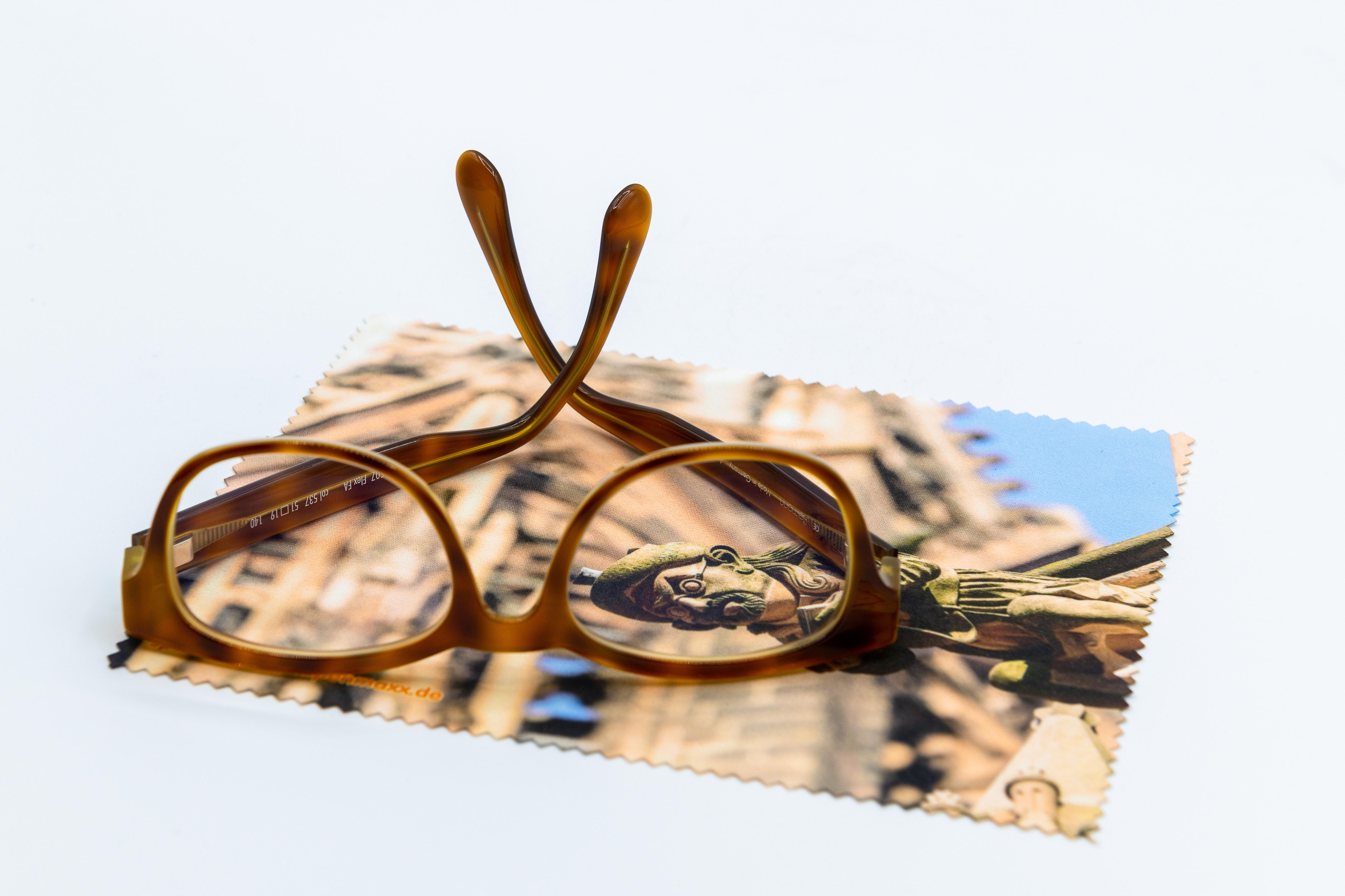 Brillenputztuch Wasserspeier